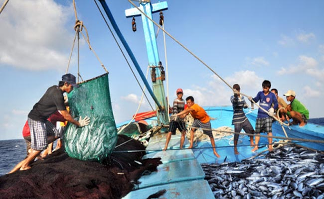 Đánh bắt cá xa bờ chủ yếu vẫn theo phương pháp truyền thống
