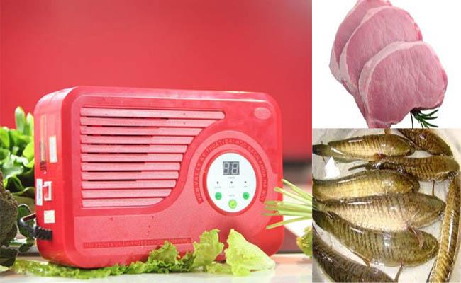 Làm sạch thịt, cá nhờ máy tạo Ozone và ion âm